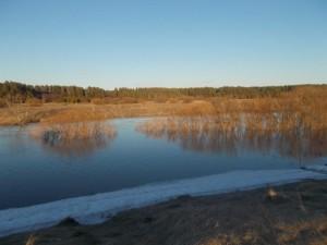 Половодье на притоке Пышмы - реке Беляковке. Фото наблюдателя гидрологического поста Черепанова Г.В.