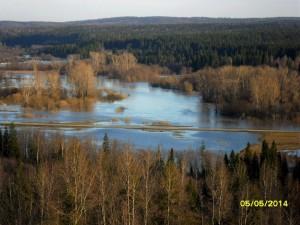 2015-04-27-5-2 Сылва в 2014 г