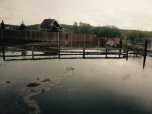 2015-05-22 р. Сысерть в районе с.Черданцево