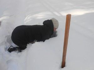 6 снегосъемка на лесном маршруте в Качканаре 180