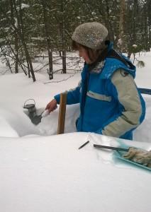7 снегосьемка на лесном маршруте в Ивделе 200