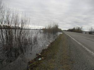 р. Сосьва, вода подбирается к автодороге г. Серов-р. п. Сосьва