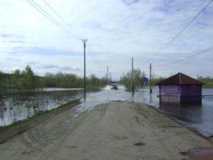 Гари, ул. Советская, мост