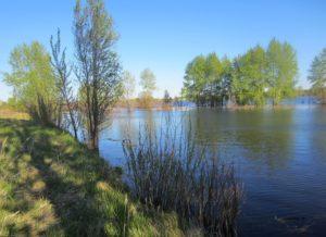 1 река Тавда