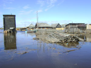 2016-05-12-3 река Сосьва зашла на ул Набережную в пос. Гари. фото Осиповой В. П.