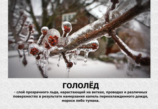 Голедготов