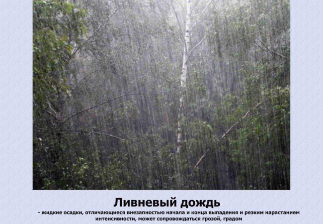 Дождьготов.